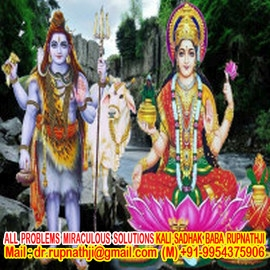 astrologer tantrik remedies