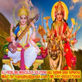 best nadi astrologer in india