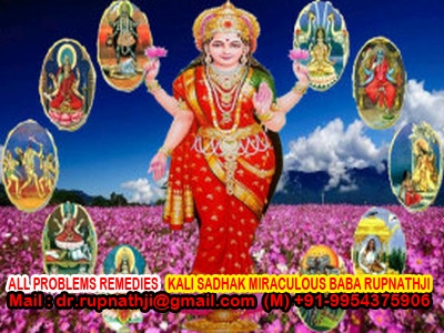career solution call divine miraculous maha avatar guru rupnath baba ji