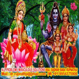 dashamahavidya tantra specialist dashamahavidya tantra remedies by worlds no 1 astrologer