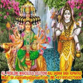 indian vedic astrology tantra remedies by worlds no 1 astrologer tantrik vastu expert