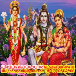 online astrologer solutions