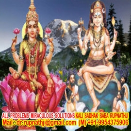 online vedic astrologer remedies