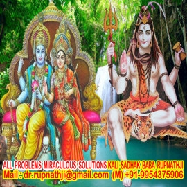 quick solution call divine miraculous bagalamukhi dashamahavidya sadhak rupnathji
