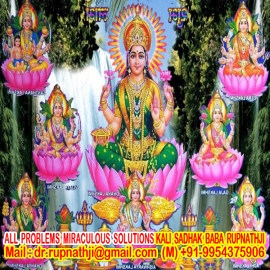 trusted astrologer of india