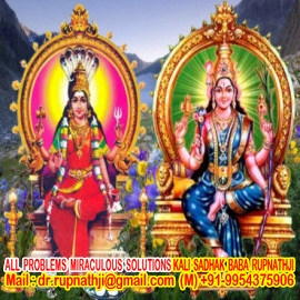 vedic astrologer tantrik remedies